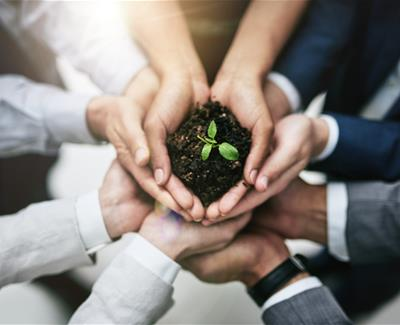 Image for Make Your Business More Green