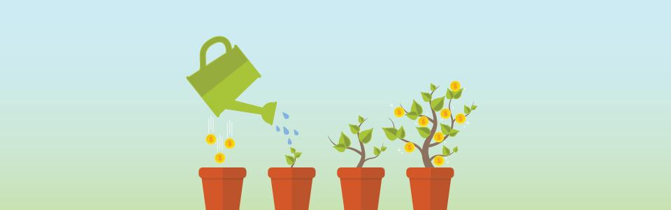 Watering pots of plants to grow money